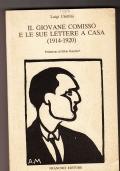 IL GIOVANE COMISSO E LE SUE LETTERE A CASA (1914-1920)