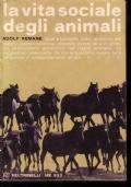 La vita sociale degli animali