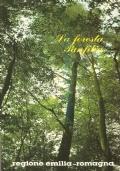 La foresta o bosco di S. Agostino