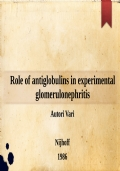Role of antiglobulins in experimental glomerulonephritis