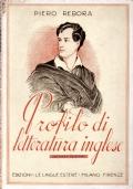 Profili di letteratura inglese