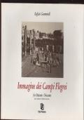 IMMAGINE DEI CAMPI FLEGREI fra Ottocento e Novecento
