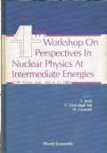 4th workshop on perspectives in nuclear physics at intermediate energies : ICTP, Trieste, Italy, may 8-12, 1989