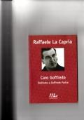 Caro Goffredo - Dedicato a Goffredo Parise