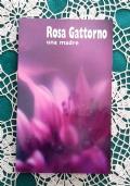 Rosa Gattorno una madre