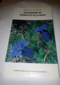 La cooperativa muratori cementisti di Ravenna 1901-1915