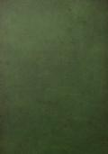 KIWI il figlio della giungla n. 4 - Lo scarabeo d'oro