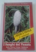 i funghi del Veneto. Baldo, Cadore, Carega, Valdalpone Lessinia e Altopiano di Asiago