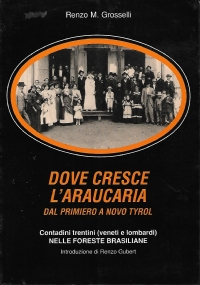 GIUDICARIE. Con corredo fotografico a cura di Luigi Bosetti. [ Trento, casa editrice Panorama, aprile 1983 ].