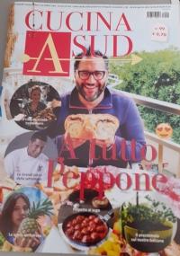 Pinypon New Magazine
