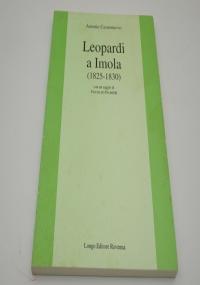 Leopardi e il reflecting. Il motivi di un incontro culturale tra letteratura, economia e orientamenti pedagogici