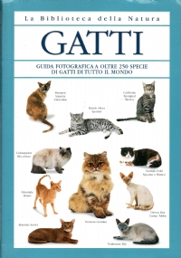 Il gatto Manuale completo