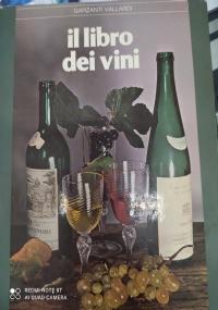 CARNE AL FUOCO.100 E PIU' RICETTE DELLA GRANDE TRADIZIONE ITALIANA