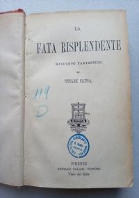 La Beata Caterina Labouré della Compagnia delle Figlie della Carità di S. Vincenzo de' Paoli