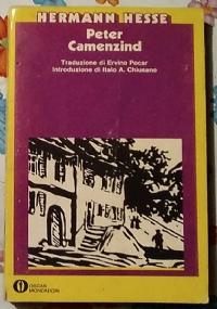 Poesia straniera vol. 13 - spagnola e ispanoamericana