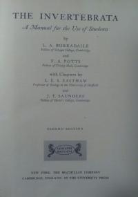 Il Belli tascabile - 210 sonetti scelti e annotati da Giuseppe Longo