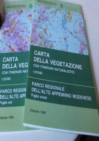 Carta della vegetazione del versante romagnolo del Parco nazionale delle foreste casentinesi- Monte Falterona - Campigna. Scala 1:25.000