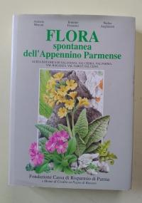 LE RICETTE DI GUERRINO - COLORI E SAPORI IN CUCINA - BATTEI PARMA 2004 - ricettario-solagna-vicenza-gastronomia