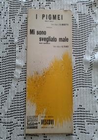 COM'E' BELLO QUANDO PIOVE/IL MIO HOBBY