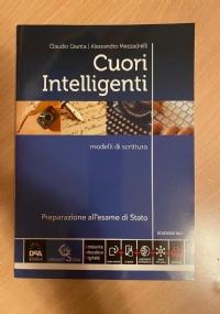 Cuori intelligenti edizione blu modelli di scrittura Preparazione per l'esame di stato